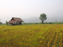 Montañas de Tailandia Imagen de archivo