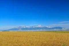 Montañas de Tatra de una distancia. Fotografía de archivo libre de regalías