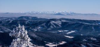 Montañas de Tatra de la colina del hora de Lysa en las montañas congeladas invierno de Moravskoslezske Beskydy en República Checa Fotos de archivo