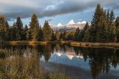 Montañas de Teton que reflejan en el agua en el aterrizaje del ` s de Schwabacher fotografía de archivo libre de regalías