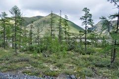 Montañas de Yakutia a finales del verano. Fotos de archivo