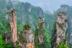Montañas de Zhangjiajie, China fotografía de archivo
