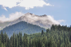 montañas del bayanaul Foto de archivo libre de regalías