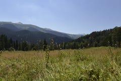 Montañas del Cáucaso Foto de archivo