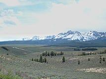 Montañas del diente de sierra cerca de Stanley, Idaho B Fotografía de archivo