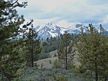 Montañas del diente de sierra cerca de Stanley, Idaho D Fotografía de archivo libre de regalías