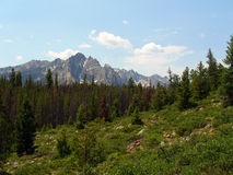 Montañas del diente de sierra de Idaho fotografía de archivo