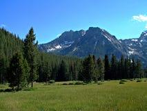 Montañas del diente de sierra de Idaho XIII Foto de archivo
