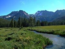 Montañas del diente de sierra de Idaho XVI Fotografía de archivo