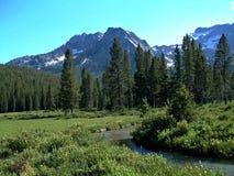 Montañas del diente de sierra de Idaho XVII Fotografía de archivo