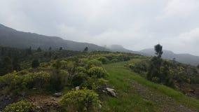 Montañas del EL Risco, Gran Canaria Imagen de archivo