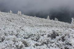 Montañas del hielo Fotografía de archivo libre de regalías