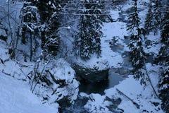 Montañas del invierno, nieve, río, piedras, bosque, pino Foto de archivo