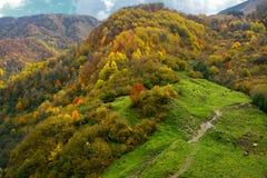 Montañas del otoño en Georgia fotos de archivo