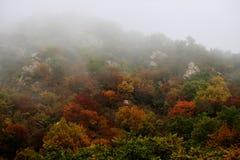 Montañas del otoño en niebla de la mañana Foto de archivo