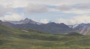 Montañas del parque nacional de Denali Imagenes de archivo