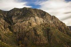 Montañas 1 del valle del pino Fotografía de archivo