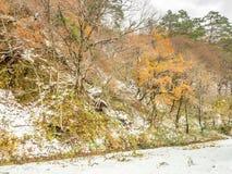 Montañas deshojadas cerca del pueblo de Shirakawa, Japón Imagen de archivo