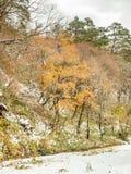 Montañas deshojadas cerca del pueblo de Shirakawa, Japón Imágenes de archivo libres de regalías