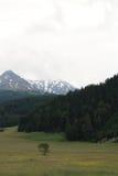 Montañas en Austria, año 2009 Fotografía de archivo libre de regalías