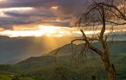 Montañas en Chiang Mai tailandia Fotografía de archivo libre de regalías