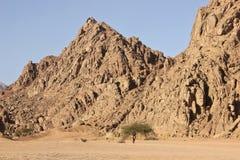 Montañas en el desierto Fotografía de archivo