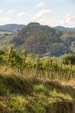 Montañas en el país vasco fotos de archivo