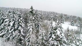 Montañas en invierno almacen de video