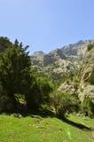 Montañas en la garganta de Galuyan, Kirguistán Fotos de archivo libres de regalías
