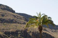 Montañas en la isla de Gran Canaria Fotos de archivo
