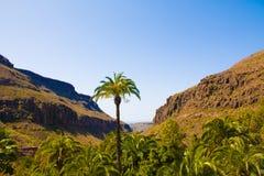 Montañas en la isla de Gran Canaria Fotografía de archivo