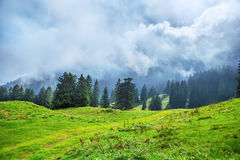 Montañas en la primavera, Suiza Imagenes de archivo
