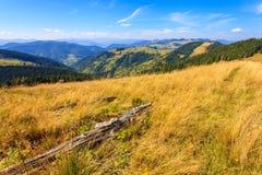 Montañas en los Cárpatos Fotografía de archivo libre de regalías