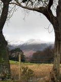 Montañas enmarcadas árbol imagenes de archivo
