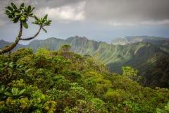 Montañas enormes de la selva de Hawaii Fotografía de archivo libre de regalías