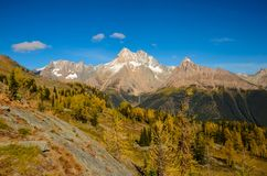 Montañas enormes de Purcell del paso del alerce de la caída foto de archivo