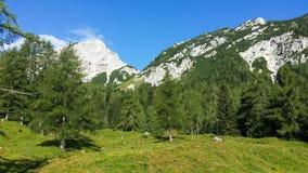 Montañas eslovenas imagen de archivo