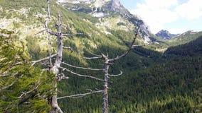 Montañas eslovenas fotografía de archivo