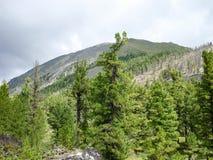 Montañas Khamar Daban Imagenes de archivo