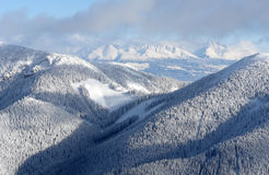 Montañas, madera y nieve. Foto de archivo