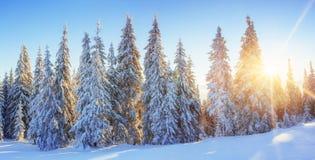 Montañas majestuosas del paisaje misterioso del invierno en puesta del sol Foto de archivo