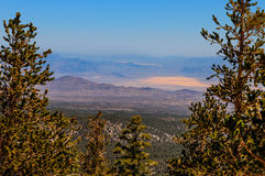 Montañas nacionales área-Mt recreativo nacional de la Bosque-primavera de Nanovoltio-Humboldt-Toiyabe charleston imágenes de archivo libres de regalías