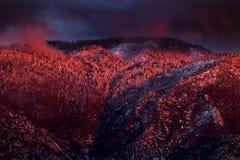 Montañas nevadas con el alpenglow de la puesta del sol imagen de archivo libre de regalías