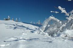 Montañas Nevado Foto de archivo