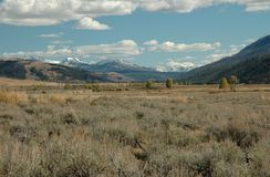 Montañas nevosas hermosas en el alto país Foto de archivo libre de regalías