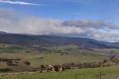 Montañas NSW Nevado Imágenes de archivo libres de regalías