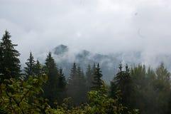 Montañas nubladas fotos de archivo