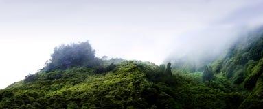 Montañas nubladas de los flores, islas de los acores Fotos de archivo libres de regalías