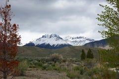 Montañas perdidas del río de Mackay Reservoir Foto de archivo