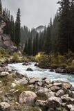 Montañas río y bosque Imagen de archivo